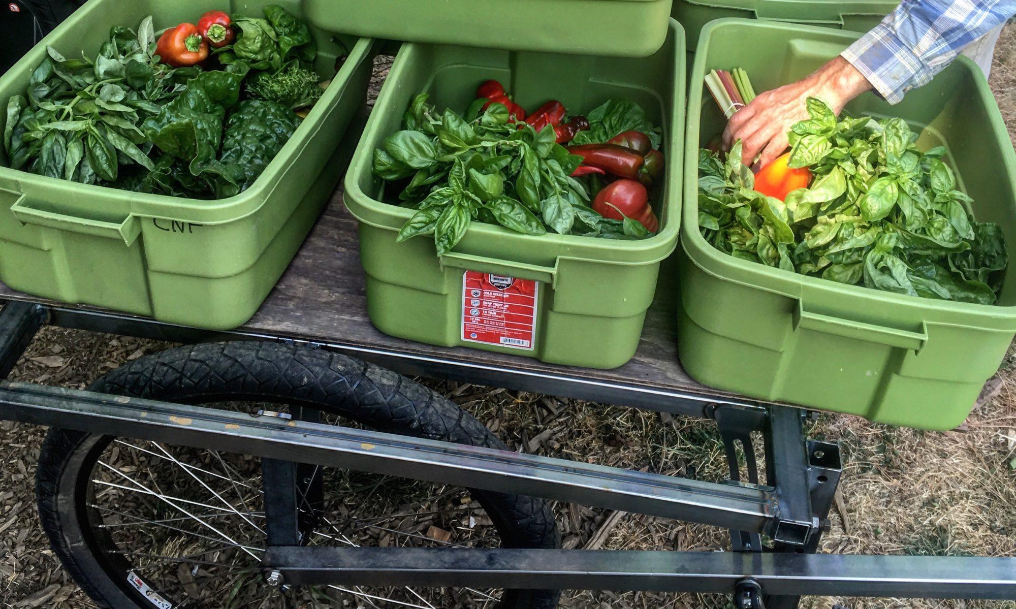 Farm Hand Carts
